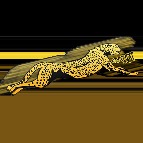 Sola_Cheetah